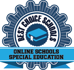 Online Schools Special Education Badge